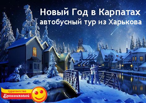 Новый Год в Карпатах. Автобусный тур из Харькова